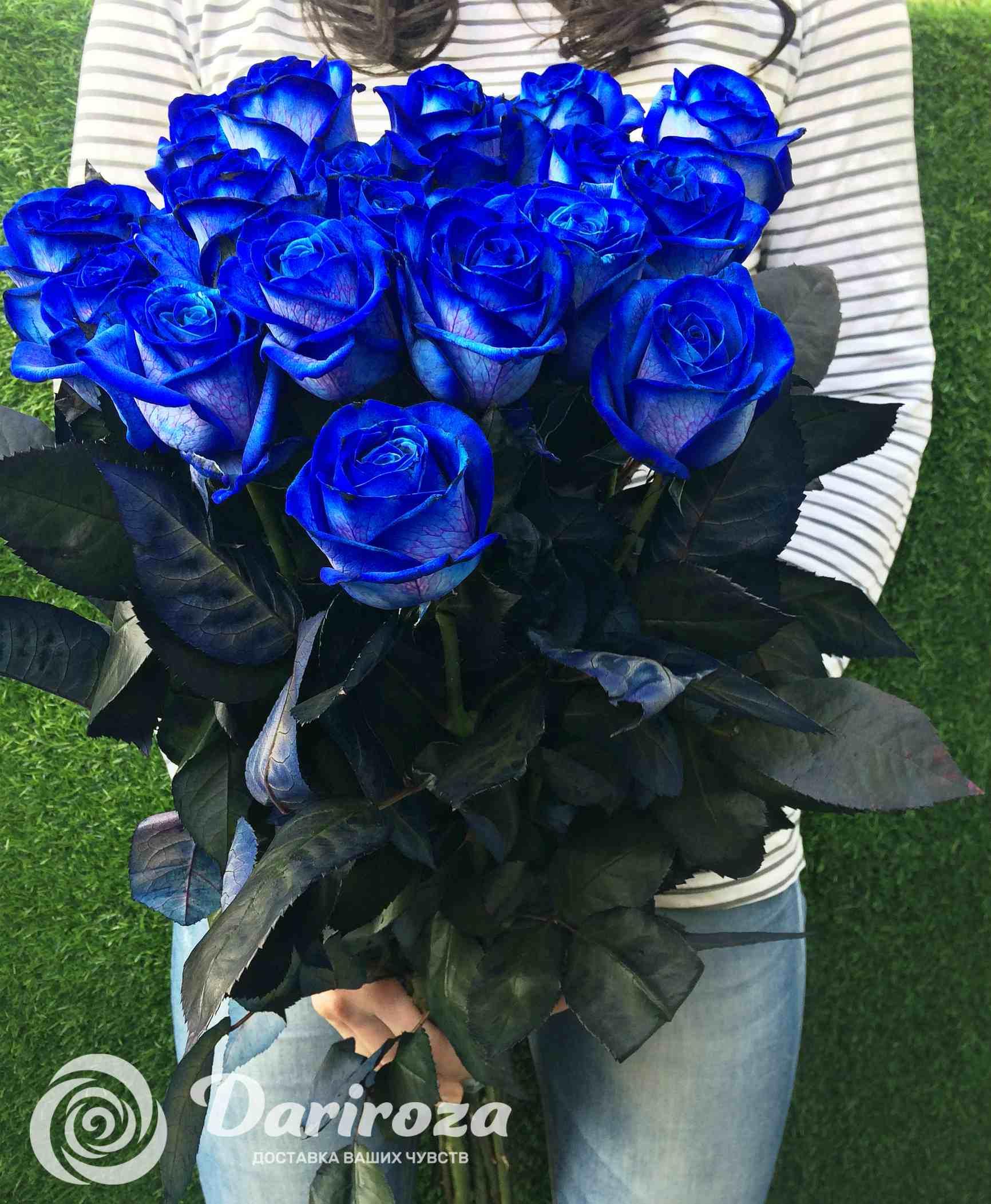 Подарить синюю розу